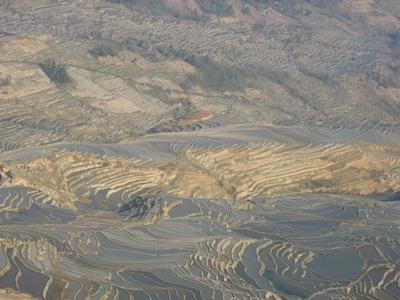 CHINA-terrassenfelder